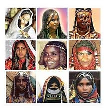 9 stammen in Eritrea    zie google educative